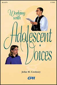 Working with  Adolescent Voices - revised