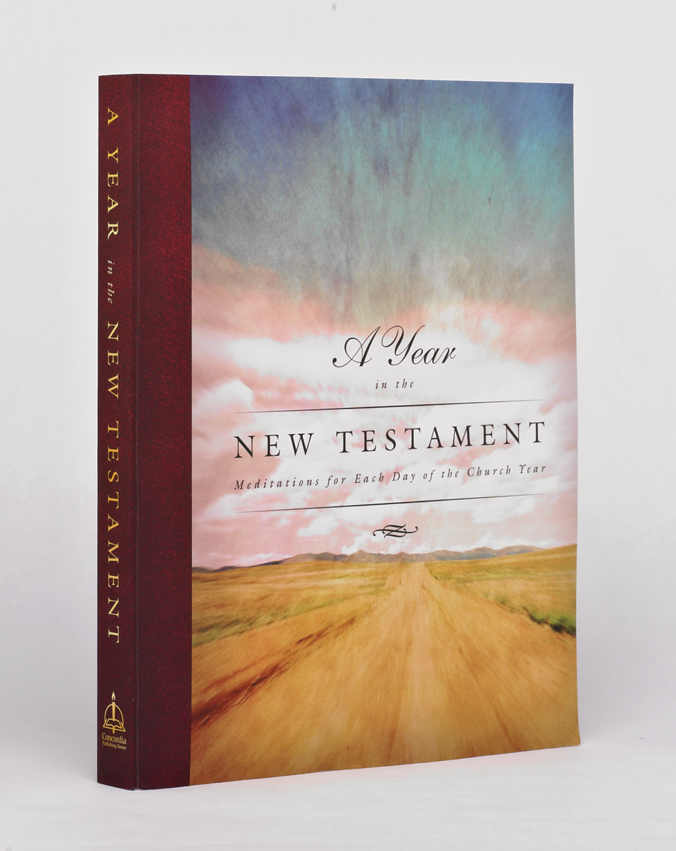 A Year in the New Testament.